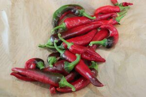 Harvested Magyar Peppers
